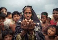 В Мьянме осталось только 300 тыс. мусульман-рохинья