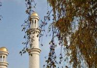 Таджикский имам и его прихожане задержаны за призыв к экстремизму