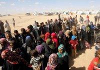 В Сирии террористы ИГИЛ взорвали 50 человек