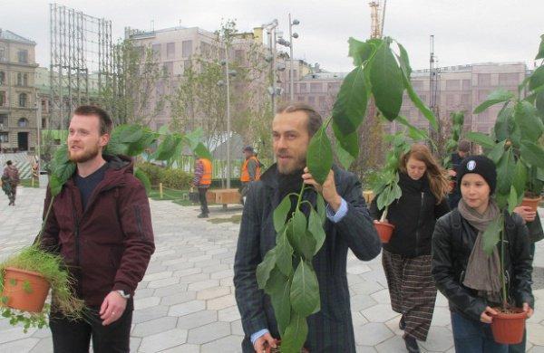 Рэпер Децл вырастил 2 авокадо для московского парка