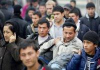Имамы займутся профилактикой экстремизма среди мигрантов
