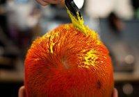 Медик: Краска для волос вызывает рак
