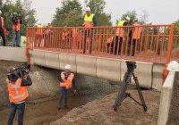 Первый в истории напечатанный мост появился в Нидерландах
