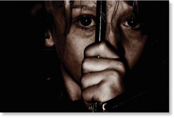 """""""вооруженные банды похищают людей, затем производят изъятие у своих жертв печени, почек, глаз..."""""""