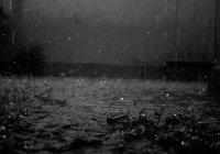 Черный дождь пошел в Эстонии