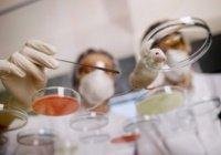 Ученые разгадали тайну возникновения рака кожи