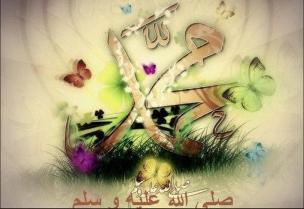 Милосердие Пророка, да благословит его аллах и приветствует