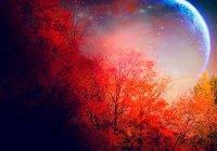 Сегодня начинается месяц Сафар. Какое поклонение совершать в этом месяце?