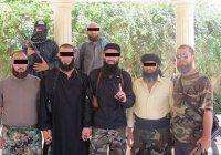 Стало известно, сколько крымчан воевали в Сирии за ИГИЛ