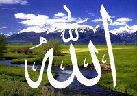 Держитесь за вервь Аллаха все…