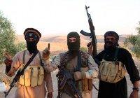 Более 5,5 тысяч боевиков ИГИЛ «разбрелись» по миру