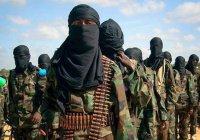 США назвали Россию главным источником боевиков для ИГИЛ