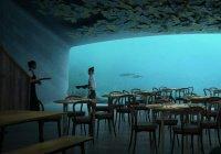 Подводный панорамный ресторан построят в Норвегии