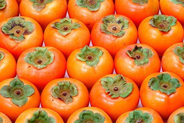 Плоды элитной хурмы приятно есть — они твердые и хрустят как китайские груши