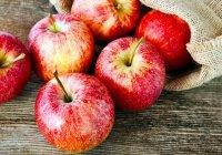 Фото яблоневого сада после урагана в Ирландии стали вирусными