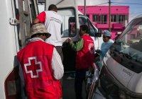 ВОЗ объявила об угрозе распространения бубонной чумы по всему миру