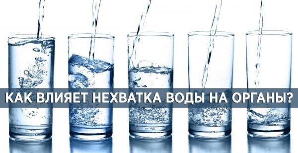 Как именно влияет нехватка воды на конкретные органы?