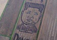 Фермер из Италии трактором нарисовал портрет Ким Чен Ына