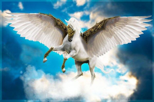 """""""И там увидел он лошадь светлой масти, у которой имелись крылья"""""""
