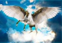 Пророк, который умел летать