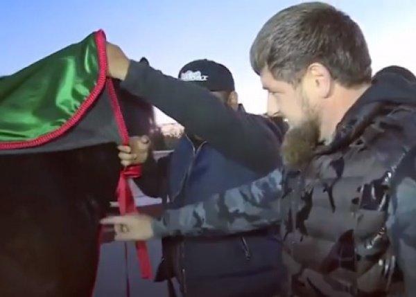 Третьеклассница изЧечни выиграла «iPhone отКадырова»