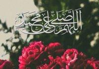 7 жизненных уроков, которые завещал нам Пророк Мухаммад (мир ему)