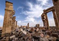 В Пальмире заявили об отсутствии обещанной помощи от ЮНЕСКО