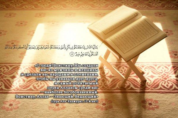 Аль-Худжурат (Комнаты), 13-й аят