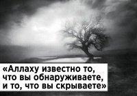 Иблис сделал дыру у Адама на животе и вошел вовнутрь…