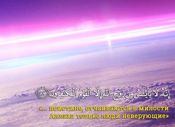 сура «Йусуф», 87 аят