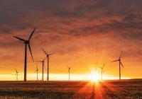 В 2050 году человечество перейдет на возобновляемую энергетику