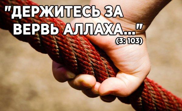 """""""Держитесь за вервь Аллаха…"""" (3: 103)"""
