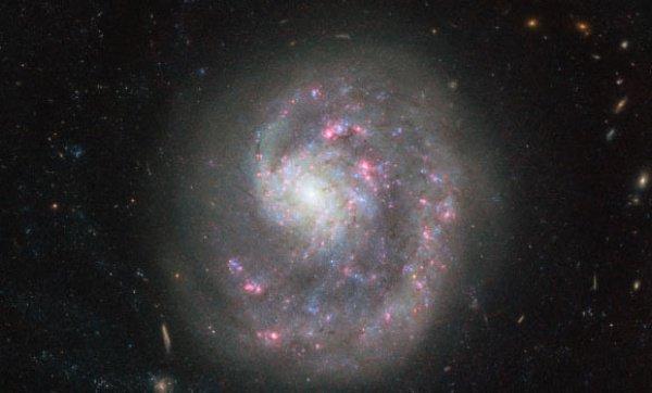 У NGC 4625 «ампутирована» спираль из-за столкновения системы с другим космических объектом