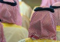СМИ: саудовские власти намерены «присвоить» активы задержанных принцев