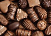 Международный шоколадный салон открылся в Москве