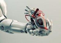 В США создали робота для сердца