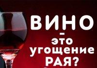 """Почему харамное вино называется """"угощением РАЯ""""?"""