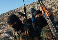 В Афганистане ИГИЛ учинило массовую казнь собственных боевиков