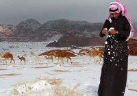 Саудовскую Аравию ждут зимние морозы