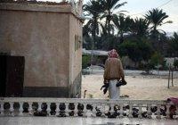 Израильские власти выразили солидарность с Египтом после теракта в мечети