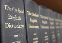 Эксперты назвали «слово года» в английском языке