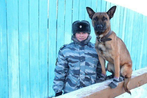Собаки-клоны будут охранять злоумышленников вЯкутии