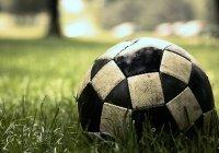 Обезьяна приняла участие в чемпионате Японии по футболу (ВИДЕО)