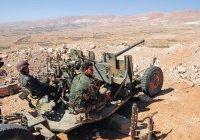 СМИ: сирийская армия применяла против ИГИЛ орудия времен ВОВ