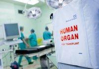Наночастицы помогут прижиться донорским органам