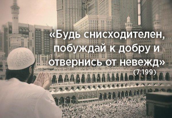 сура «аль А`раф», «Преграды», аят 199