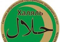 В Казани разработают единый национальный стандарт «Халяль»