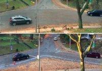 В Канаде опасный перекресток улучшили опавшими листьями