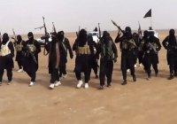 В Чехии обозначили ИГИЛ как отдельное государство