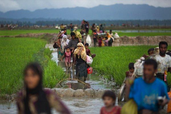 Из Мьянмы в Бангладеш бежали более 600 тысяч мусульман-рохинджа.